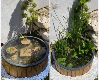 Set Mini Pond